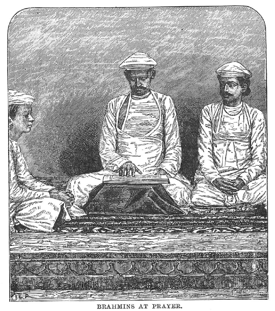 Brahmin  Wikipedia